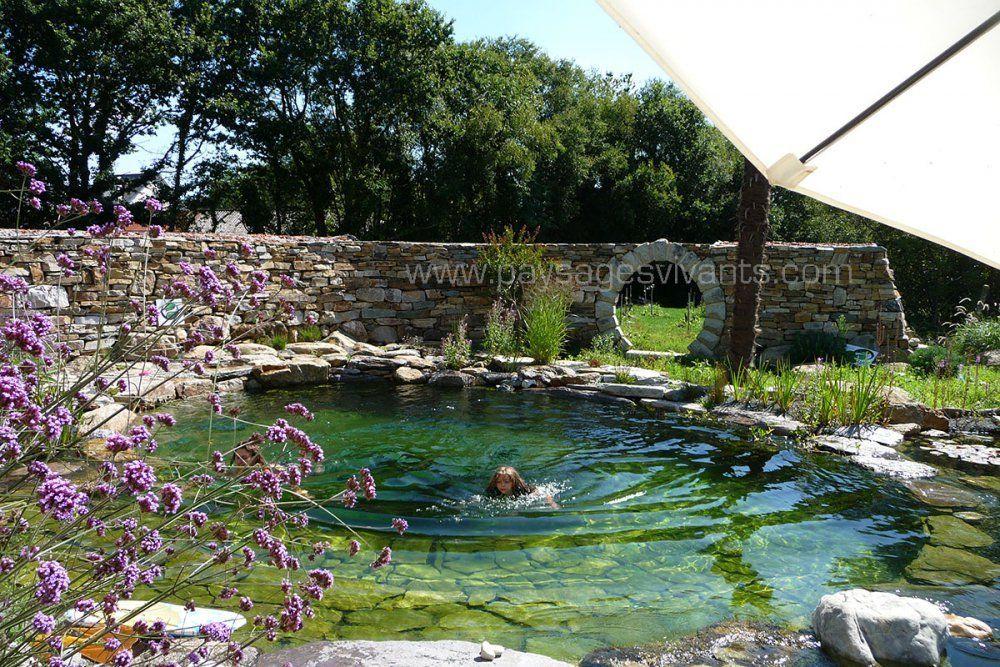Faire les plantations et entretien d 39 hiver au jardin for Jardin hiver plantation