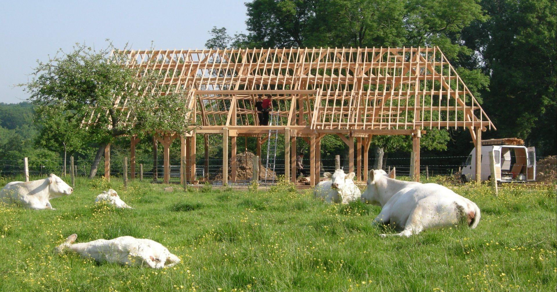 charpente d finition simple de la charpente twiza r seau de l 39 habitat cologique. Black Bedroom Furniture Sets. Home Design Ideas